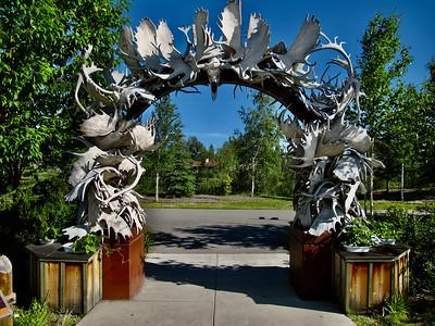 Moose Antler Arch