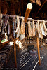Salmon strips hanging on a pole rack at an Athabascan village on the Riverboat Discovery Tour.  Fairbanks, Alaska<br /> August 06, 2011