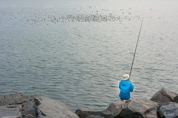 Catching Birds?