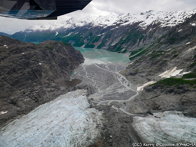 Terminus of the Muir Glacier