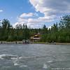 Cooper Creek Salmon Fishing