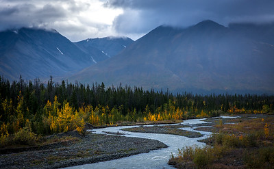 Fall color beginning on The Haines Highway