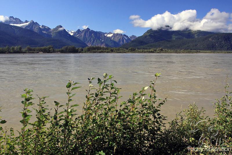 Chilkat River Near Haines