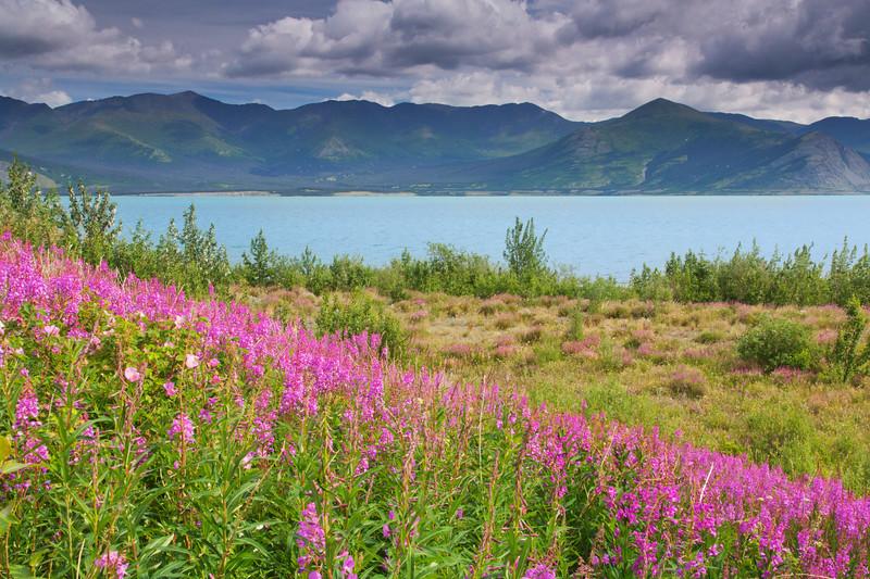 Kluane Lake, Y.T., Canada
