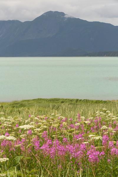 Chilkat Inlet & Mt. Ripinski, Haines, Alaska