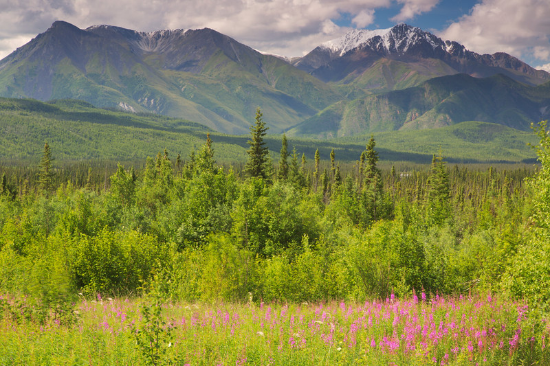 Kluane National Park & Reserve, Y.T., Canada