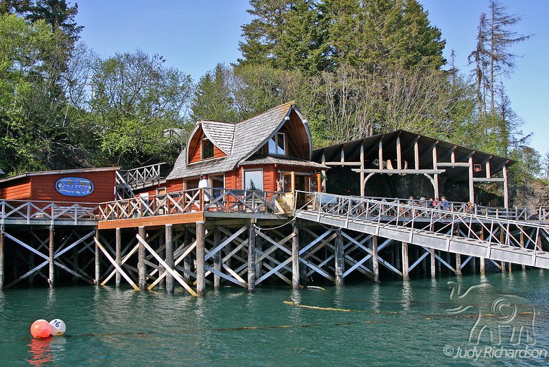 The Saltry Restaurant at Halibut Cove