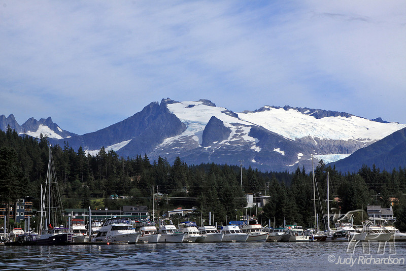 Auke Bay with boats docked and Glacial Mountains behind