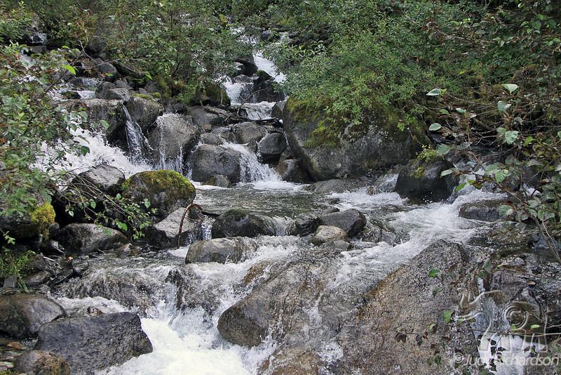 Glacier stream at Mendenhall