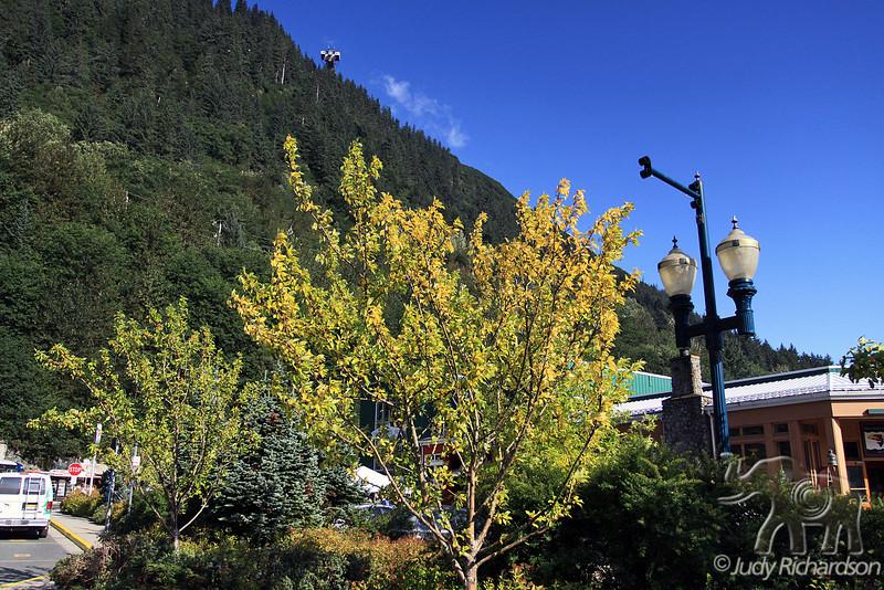 Part of Mt. Robert's Tram on a sunny day in Juneau, Alaska