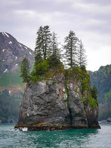 Kenai Fjords needle island
