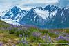 Spencer Glacier Area