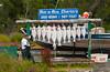 A fishing charter company display of hanging fish in Ninilichik, Alaska, USA, America.