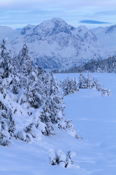 Turnagain Pass, Alaska