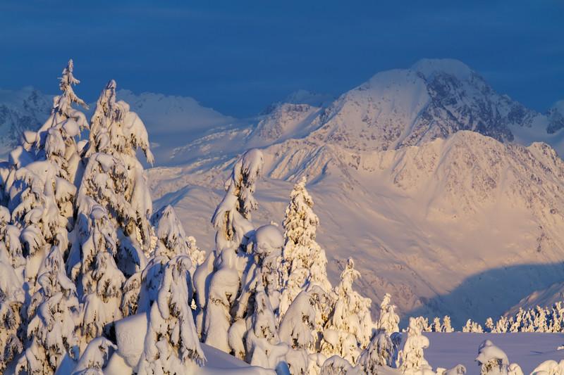 Turnagain Pass, Kenai Peninsula, Alaska
