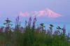 Mt. Illiamna Volcano