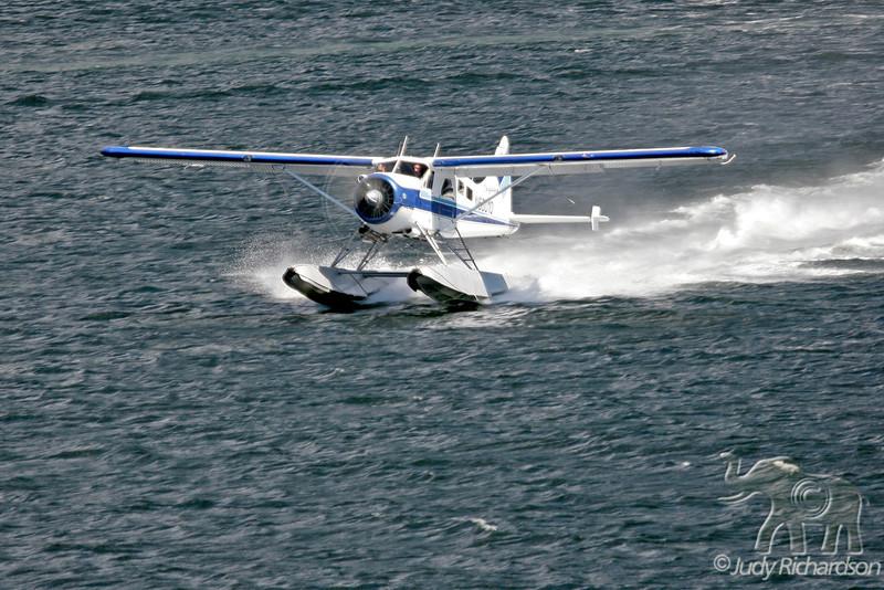 Float plane landing in Ketchikan