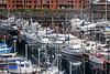 Ketchikan small boat harbor