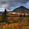 Tundra near Twin Lakes