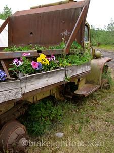 Dump Truck Flower Garden
