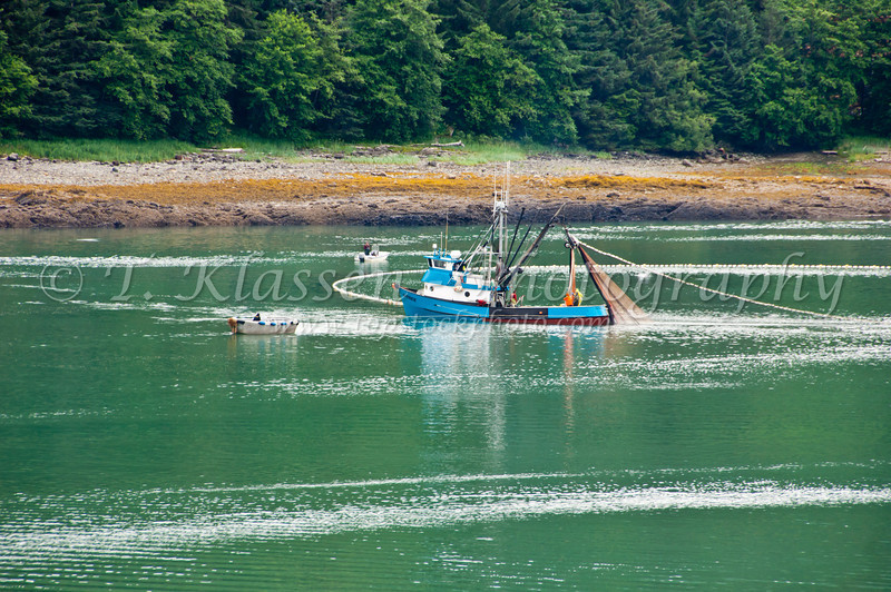 A fishing boat tending to nets in the inside passage, Alaska, USA, America.