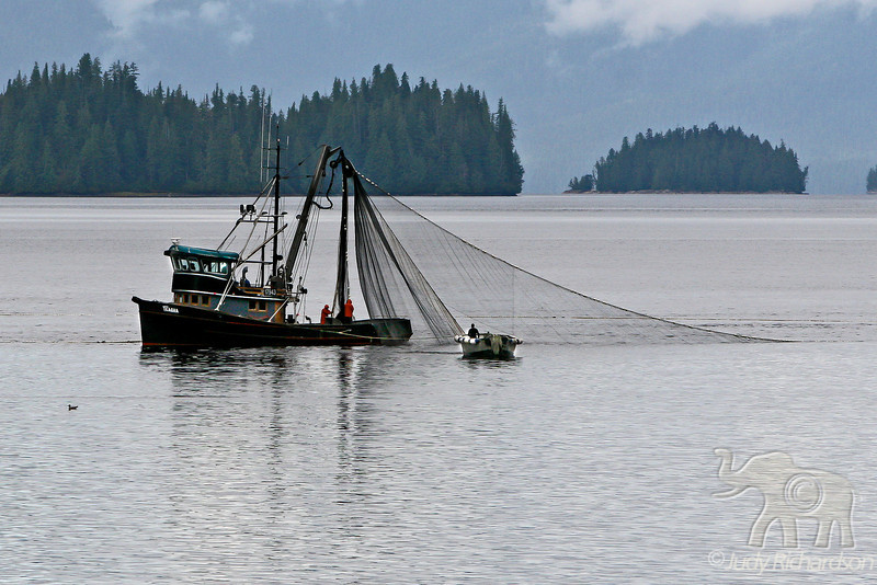Fishing boat with nets in Neet's Bay ~ Misty Fjords National Monument Wilderness