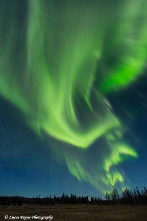 View of green Northern Lights dancing in the sky above the Petersville area of Southcentral Alaska<br /> <br /> <br /> November 01, 2012