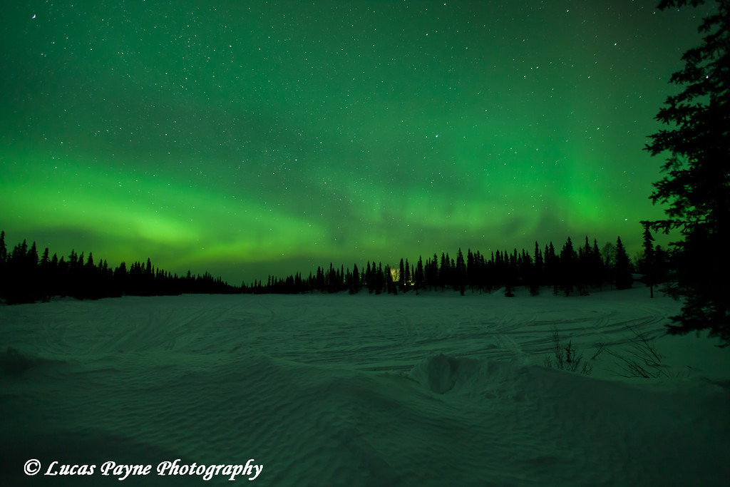 The green glow of the Aurora Borealis (Northern Lights) over Gate Lake along the Petersville Road on St. Patricks Day<br /> March 17, 2012