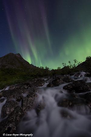 Aurora Borealis (Northern Lights) dancing above Archangel Creek and the Talkeetna Mountains in Archangel Valley, Hatcher Pass, Alaska<br /> <br /> August 24, 2013