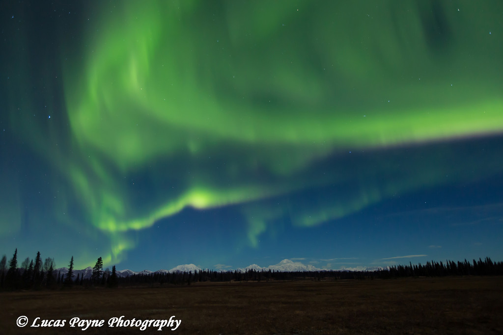 View of green Northern Lights dancing in the sky above Mt. McKinley and the Alaska Range as seen from the Petersville Road, Southcentral Alaska<br /> <br /> <br /> November 01, 2012
