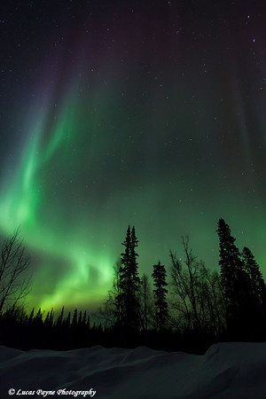 The Aurora Borealis (Northern Lights) dancing overhead from the Petersville Road on the eve of St. Patricks Day<br /> March 16, 2012