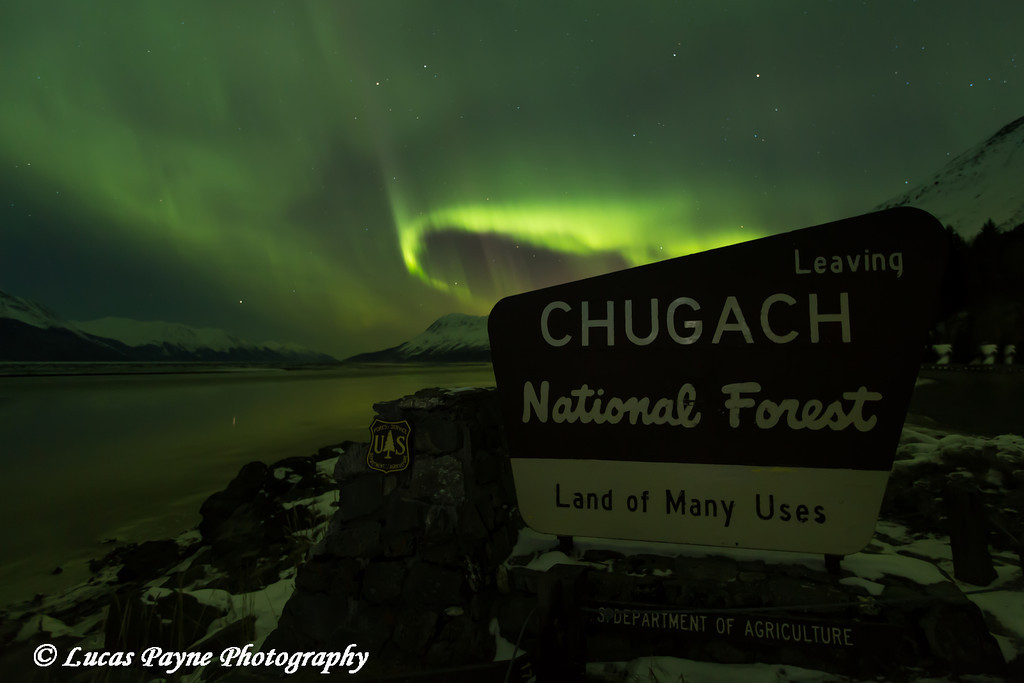 """View of the Aurora Borealis (Northern Lights) dancing above the """"Chugach National Forest"""" sign along Turnagain Arm and the Seward Highway, Alaska<br /> <br /> March 17, 2013"""