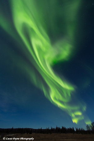 View of green Northern Lights dancing in the sky above the Petersville area of Southcentral Alaska<br /> <br /> November 01, 2012