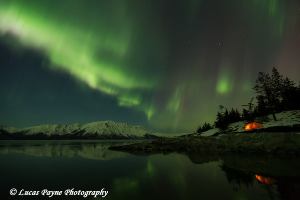 View of the Aurora Borealis (Northern Lights) dancing above the Chugach Mountains with a backpacking tent reflecting in the waters of Turnagain Arm, Kenai Peninsula, Alaska<br /> <br /> March 17, 2013