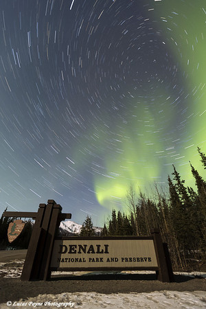 The Aurora Borealis (Northern Lights) and stars circling above the sign marking the entrance to Denali National Park and Preserve, Interior Alaska.<br /> <br /> April 12, 2014