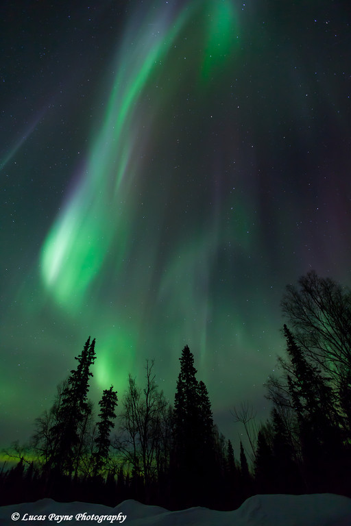 The Aurora Borealis (Northern Lights) dancing overhead from the Petersville Road on the eve of St. Patricks Day<br /> <br /> March 16, 2012
