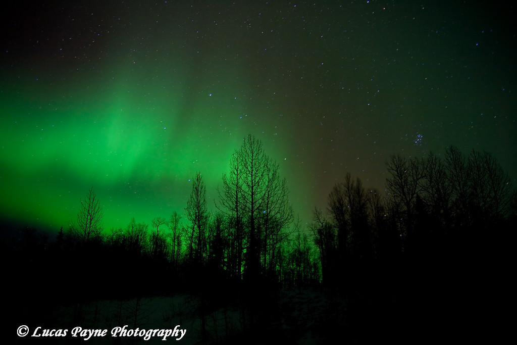 The aurora borealis in Alaska.<br /> October 28, 2008