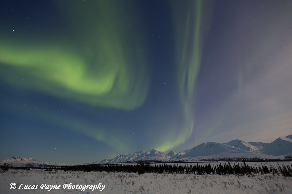 View of the Aurora Borealis (Northern Lights) dancing above the Alaska Range along the Parks Highway at Broad Pass, Interior Alaska.<br /> <br /> April 11, 2014
