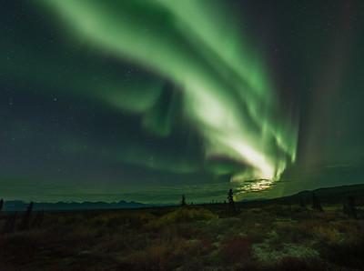 Denali Highway Auroras 3