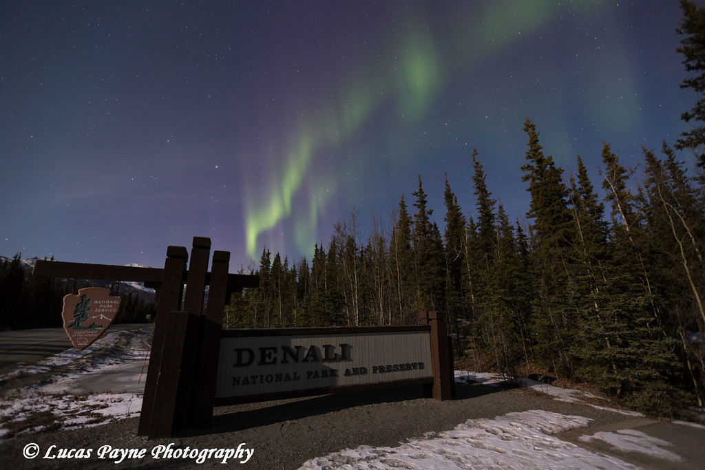 The Aurora Borealis (Northern Lights) dancing above the sign marking the entrance to Denali National Park and Preserve, Interior Alaska.<br /> <br /> April 12, 2014
