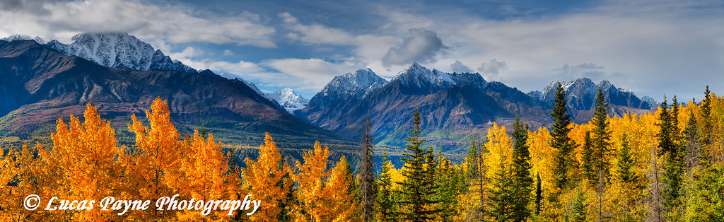Panoramic view of the fall foliage and snowcapped Chugach Mountains along the Glenn Highway<br /> HDR<br /> September 08, 2011