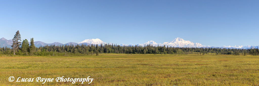 Panoramic view of the Southside of Mt. McKinley (Denali) and Alaska Range from the Petersville Road, Southcentral Alaska.<br /> <br /> Juy 30, 2014