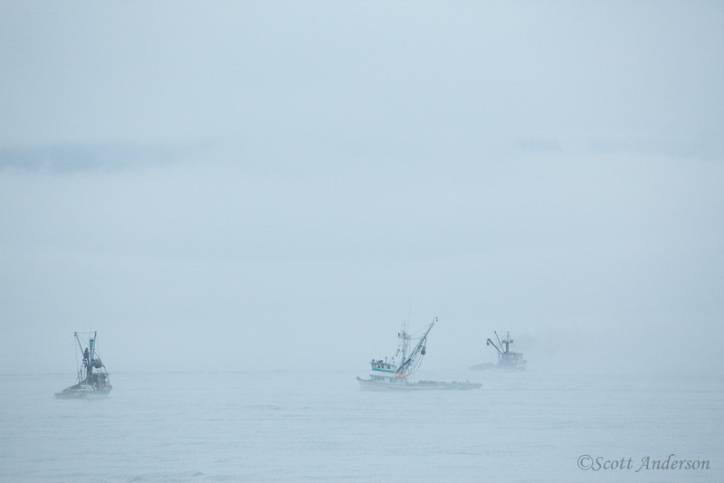Fishing boats in the thick fog in Prince William Sound.