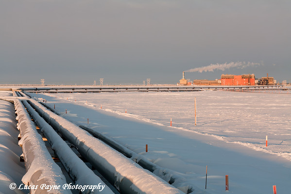 Central Gas Facility (CGF) and Pipelines<br /> February 2011