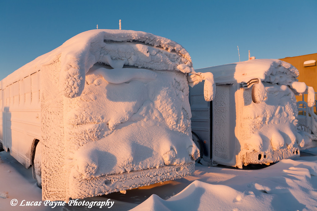 Snow Covered Busses Prudhoe Bay<br /> February 2011