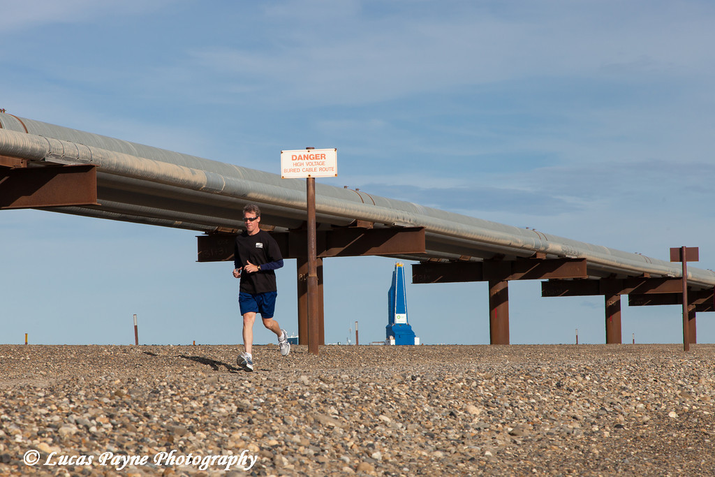 Slope worker running in the Endicott Fun Run with oil pipelines and the Liberty Oil Rig in the background, Prudhoe Bay Oil field, North Slope, Arctic Alaska, <br /> <br /> July 28, 2012