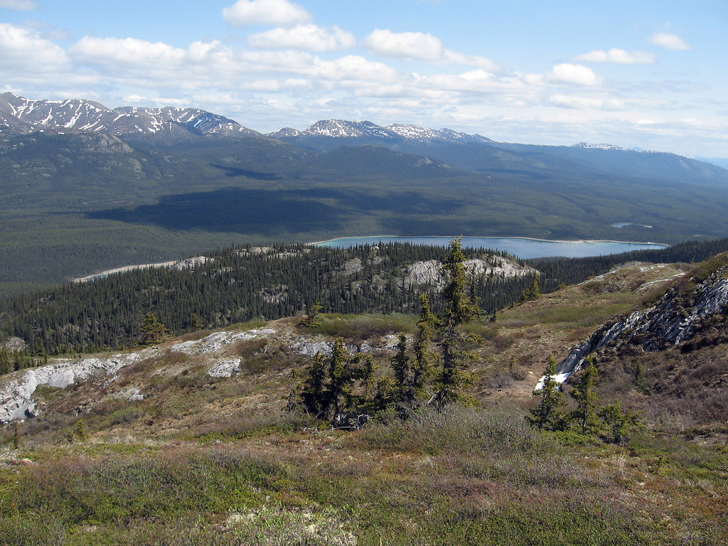 View from the top of Grey Mountain near Whitehorse.