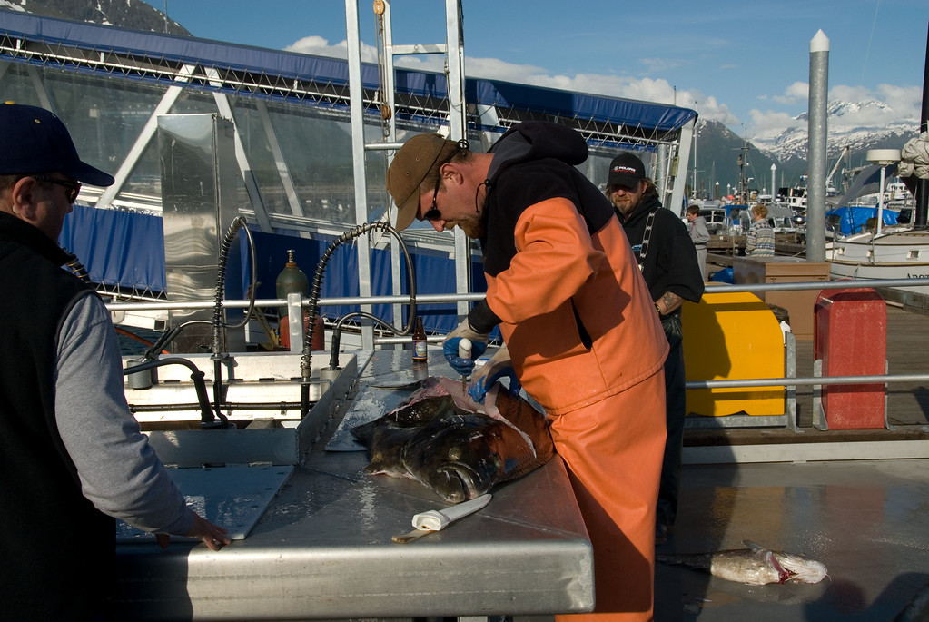 Filleting a 100-pound halibut at the end of the day.
