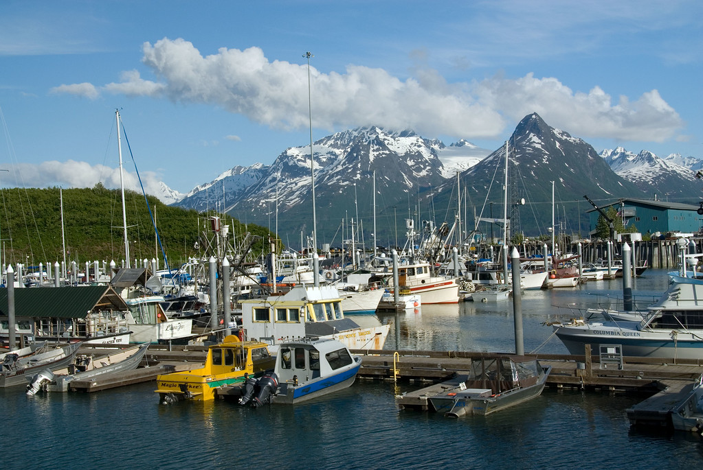 Another view of the boats in the Valdez small boat harbor.