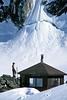AK-1993-s106a Sheldon Mtn Hut